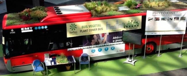 buses-verdes-1