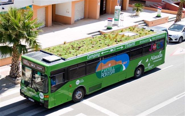 buses-verdes-2